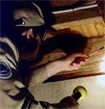 Sacramento Termite Inspections